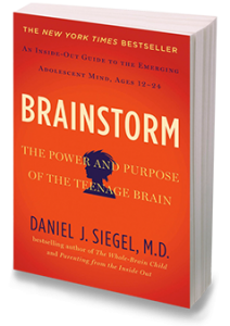 DrDanSiegel_Brainstorm_Cover_Small 3D AT
